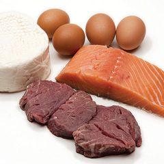 Dierlijke eiwitten VS Plantaardige eiwitten