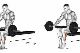 Seated barbell calf press