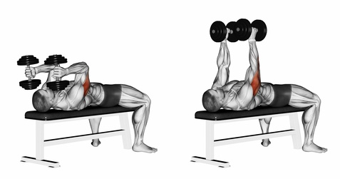 dumbbell extension